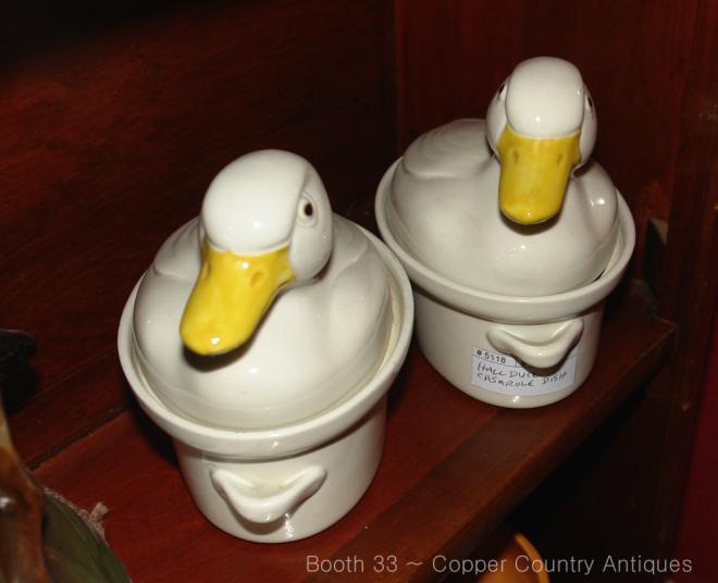 Hall Ducks in Tucson Arizona